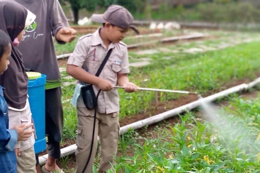 Dokumentasi-Sekolah-Alam-Kebun-Tumbuh-Depok-Jasa-Landingpage-2.jpg